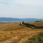 Rohans Run Camino